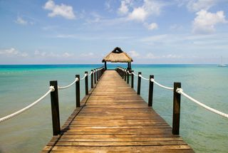 Dock1.jpg